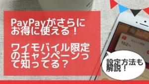 PayPayがお得に使える! ワイモバイル限定のキャンペーンって知ってる? (1)
